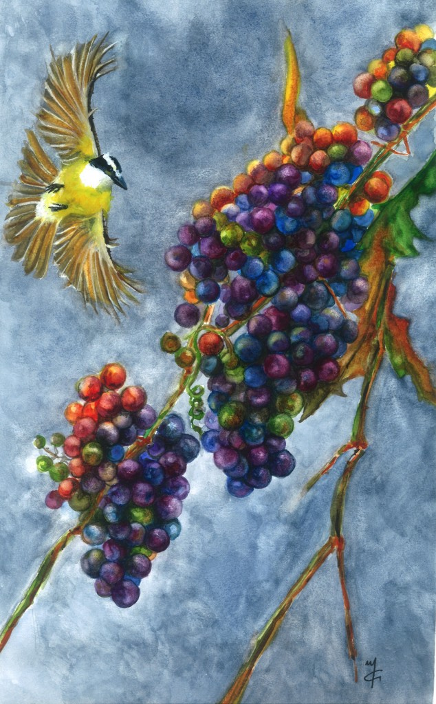 Grapes1-Marialena Sarris