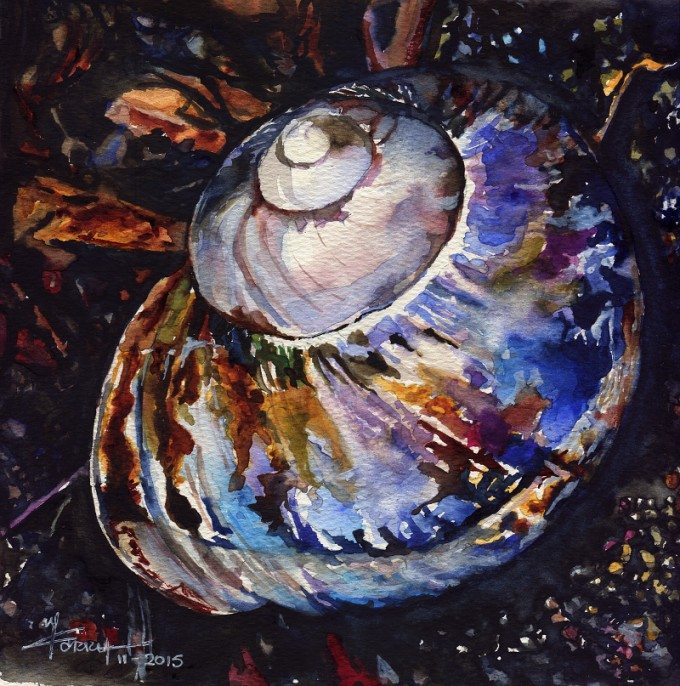 A Colourful Shell- Watercolor Painting- Artist Marialena Saris- ©11-2015
