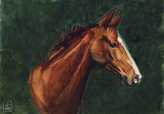 Horse Head- Watercolour Sketch- Artist Marialena Sarris - © 12- 2015