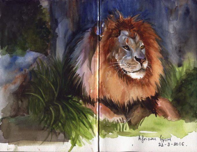 African Lion - Watercolour Wild Life Sketch- Artist Marialena Sarris- © 21-3-2016