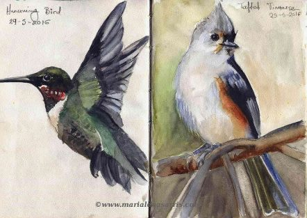 Ornithology-Pages 16-17- Watercolour Wildlife Birds Sketches- Artist Marialena Sarris- 5-2016