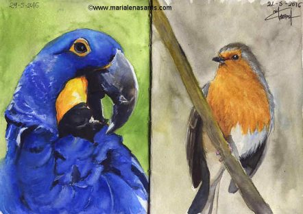 Ornithology- Pages 4-5- Watercolour Wildlife Birds Sketches- Artist Marialena Sarris- 5-2016