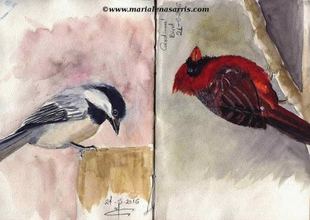 Ornithology- Pages 6-7- Watercolour Wildlife Birds Sketches- Artist Marialena Sarris- 5-2016