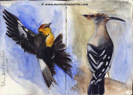 Ornithology- Pages 8-9- Watercolour Wildlife Birds Sketches- Artist Marialena Sarris- 5-2016