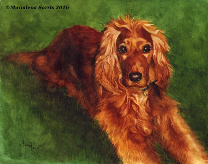 Melina- Watercolour Pet Portrait- Artist Marialena Sarris- 24-8-2016