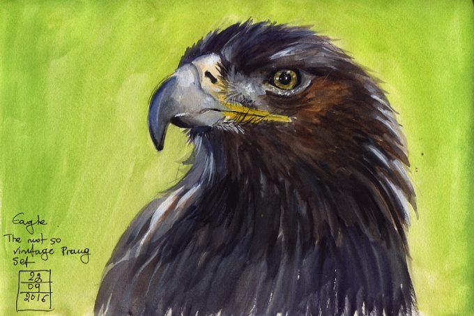 An Eagle- Watercolour Sketch- Artist Marialena Sarris - © 22-9-2016