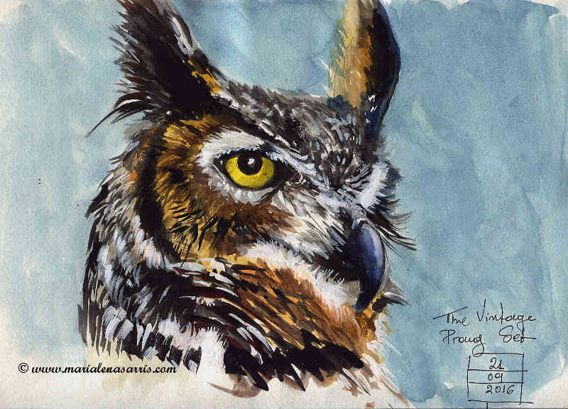 An Owl- Watercolour Animal Study 1- Artist Marialena Sarris- © 21-9-2016