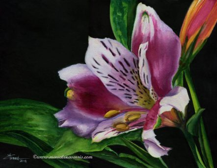 Lilly- Watercolor Painting- Artist Marialena Sarris