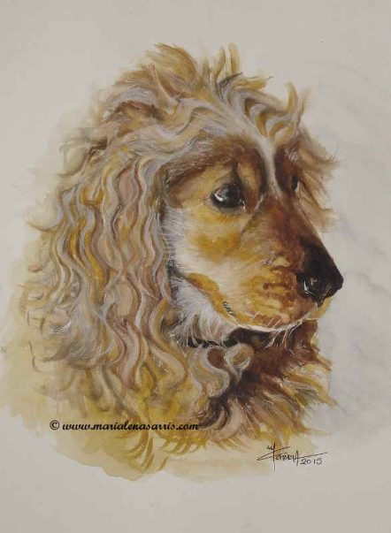Sweet Melina- Watercolor pet portrait- Artist Marialena Sarris- © 2015- Commissioned