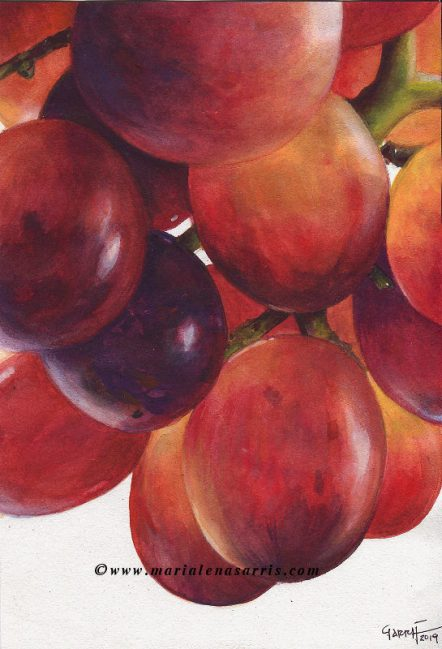 Grapes- Close up Grapes Watercolour Painting- © Artist Marialena Sarris 2019