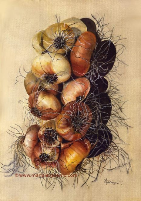Onions- Marialena Sarris-38x58cm