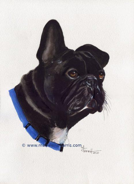 Darko -Pet Portrait -Size A3