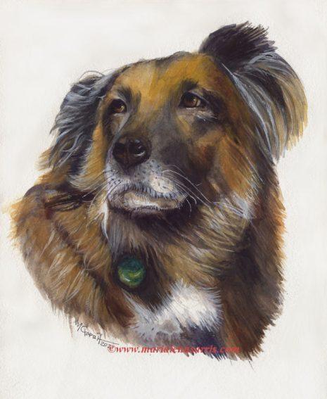 Dias-Pet Portrait Commissioned- Marialena Sarris